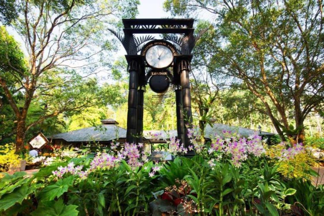 Botanic Gardens | Singapore